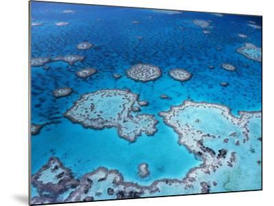 Aerial View of Hardy Reef, Great Barrier Reef and Sea, Queensland, Australia-Jurgen Freund-Mounted Photographic Print