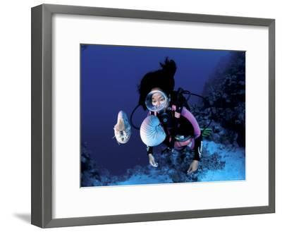 Diver with Pair of Pearly Nautilus, Great Barrier Reef, Queensland, Australia-Jurgen Freund-Framed Photographic Print