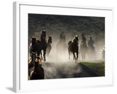 Cowboys Driving Horses at Sombrero Ranch, Craig, Colorado, USA-Carol Walker-Framed Photographic Print