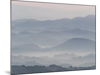The Andalucian Campagna Near Montellano at Dawn, Andulacia, Spain, Febraury 2008-Niall Benvie-Mounted Photographic Print
