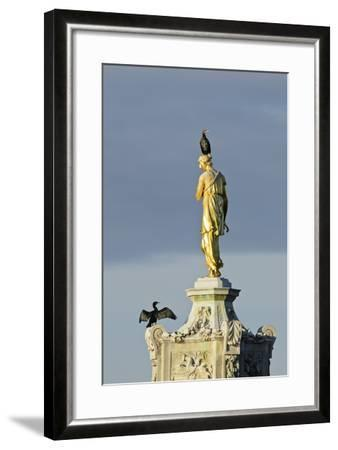 Common Comorants Perched on Statue Drying Out, Bushy Park, London, England, UK, November-Terry Whittaker-Framed Photographic Print