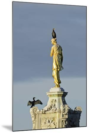 Common Comorants Perched on Statue Drying Out, Bushy Park, London, England, UK, November-Terry Whittaker-Mounted Photographic Print