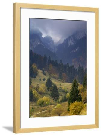 Rock of the King, Piatra Craiului National Park, Transylvania, Carpathian Mountains, Romania-D?rr-Framed Photographic Print