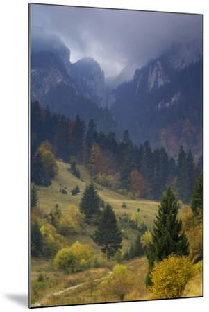 Rock of the King, Piatra Craiului National Park, Transylvania, Carpathian Mountains, Romania-D?rr-Mounted Photographic Print
