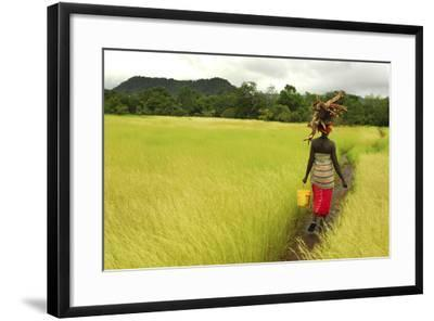 Bassari Woman Carrying Firewood on Her Head. Bassari Country, East Senegal-Enrique Lopez-Tapia-Framed Photographic Print