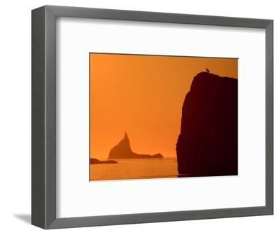 Icebergs Silhouetted at Sunset, Disko Bay, Greenland, August 2009-Jensen-Framed Photographic Print