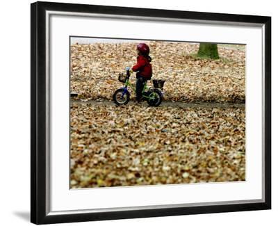 Ein Kind Radelt Am Dienstag, 8.November 2005, Zwischen Dem Herbstlaub--Framed Photographic Print