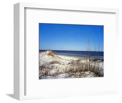Pristine Dunes on Jekyll Island, Georgia-Giovanna Dell'orto-Framed Photographic Print