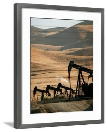 Oil Pumps Work the Midway Sunset Oil Field West of Taft, Calif.--Framed Photographic Print