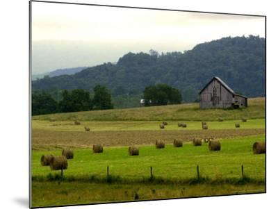 Landscapes Along the Farm Heritage Road-Jon C. Hancock-Mounted Photographic Print