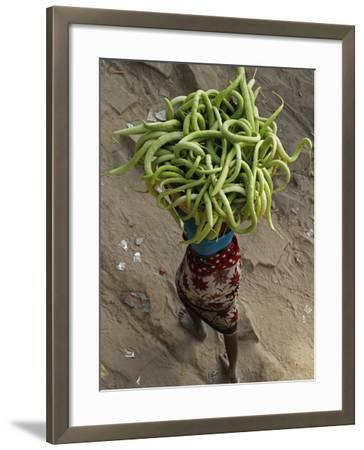 Indian Farmer Carries Cucumbers to Sell in the Market on the Outskirts of Allahabad, India--Framed Photographic Print