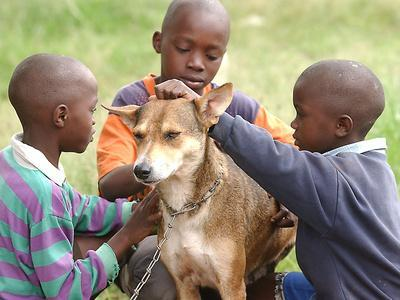 Brothers with Their Dog Now Named Mkombozi (Saviour)--Framed Photographic Print