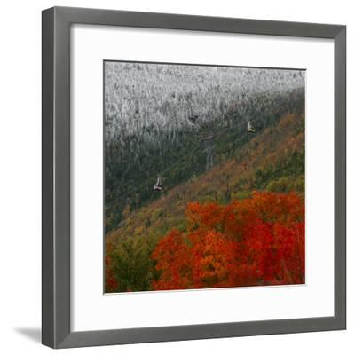 Tram Cars Take Tourists Up Cannon Mountain in New Hampshire as Snow Meets with Changing Leaves--Framed Photographic Print