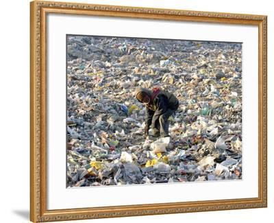 An Impoverished Mongolian Man Sorts Through Garbage at an Ulan Bator Dump--Framed Photographic Print