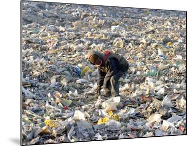 An Impoverished Mongolian Man Sorts Through Garbage at an Ulan Bator Dump--Mounted Photographic Print