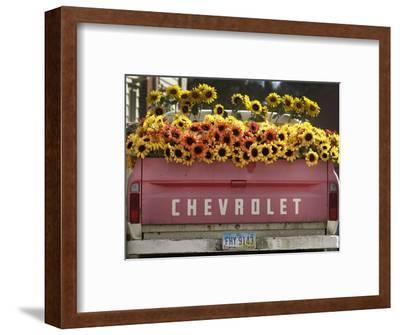 Chevrolet-Amy Sancetta-Framed Photographic Print
