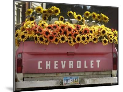 Chevrolet-Amy Sancetta-Mounted Photographic Print