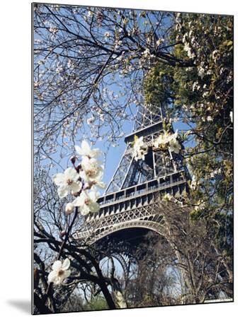 Eiffel Tower-Michel Lipchitz-Mounted Photographic Print