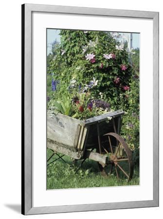 Vintage Wheelbarrow with Flowers--Framed Photographic Print