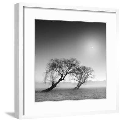 Reverencia-Moises Levy-Framed Photographic Print