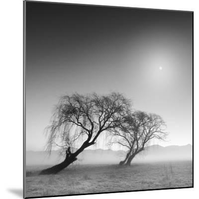Reverencia-Moises Levy-Mounted Photographic Print