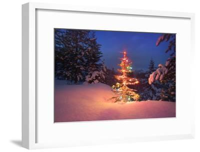 Christmas Tree in Snow with Lights--Framed Photographic Print