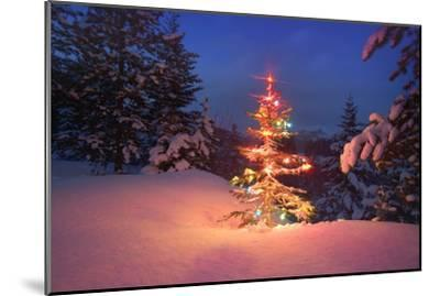 Christmas Tree in Snow with Lights--Mounted Photographic Print