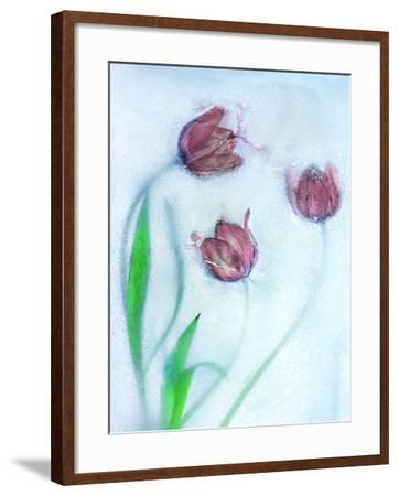 Tulipanes Rojos-Moises Levy-Framed Photographic Print
