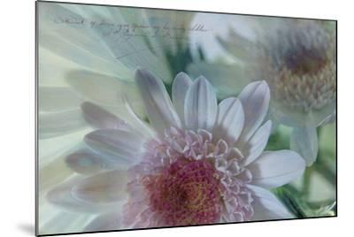 Mums and Fuji 3-Bob Rouse-Mounted Photographic Print