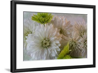 Poms and Yoko 2-Bob Rouse-Framed Photographic Print