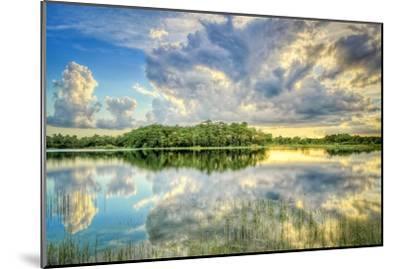 Everglades Sunset-Dennis Goodman-Mounted Photographic Print