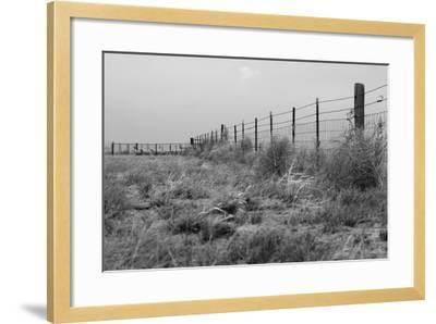 Tumbleweed Fences and Sheep-Amanda Lee Smith-Framed Photographic Print