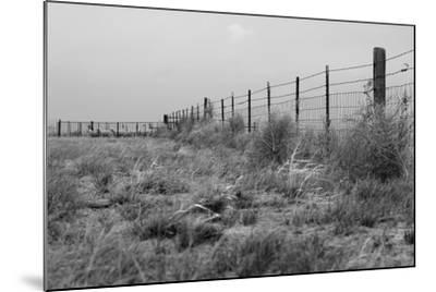 Tumbleweed Fences and Sheep-Amanda Lee Smith-Mounted Photographic Print