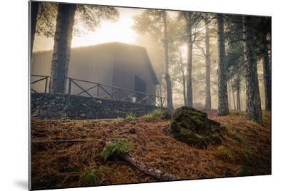Fog-Giuseppe Torre-Mounted Photographic Print