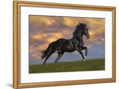 Fantasy Horses 40-Bob Langrish-Framed Photographic Print