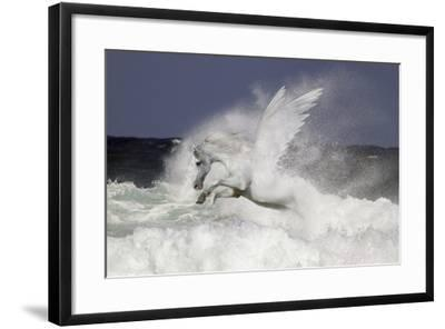 Fantasy Horses 39-Bob Langrish-Framed Photographic Print