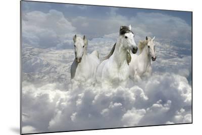 Fantasy Horses 41-Bob Langrish-Mounted Photographic Print