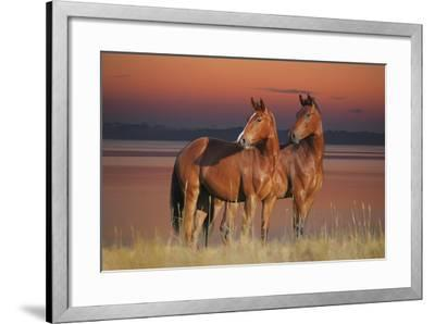 Tranquil Waters-Bob Langrish-Framed Photographic Print