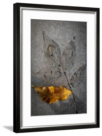 Cement Autumn 1295-Gordon Semmens-Framed Photographic Print
