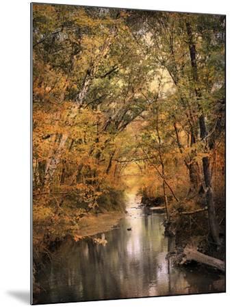 Autumn Riches 2-Jai Johnson-Mounted Photographic Print