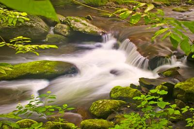 mountain stream-Bob Rouse-Framed Photographic Print