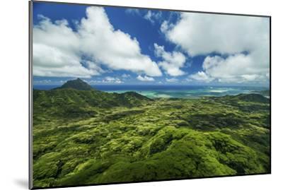 Kualoa Jungles-Cameron Brooks-Mounted Photographic Print