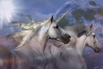 Unicorn 69-Bob Langrish-Framed Photographic Print