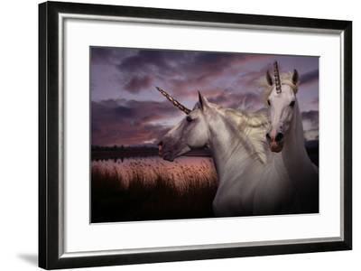 Unicorn 70-Bob Langrish-Framed Photographic Print