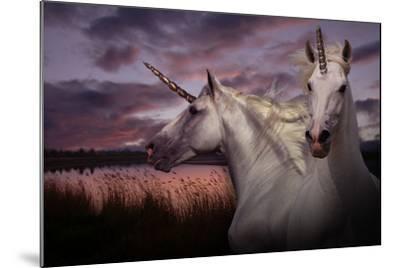 Unicorn 70-Bob Langrish-Mounted Photographic Print