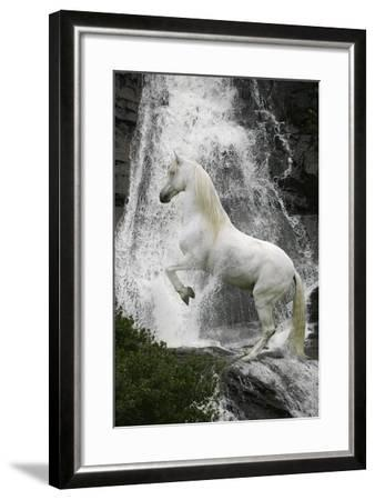 Water Nymph-Bob Langrish-Framed Photographic Print