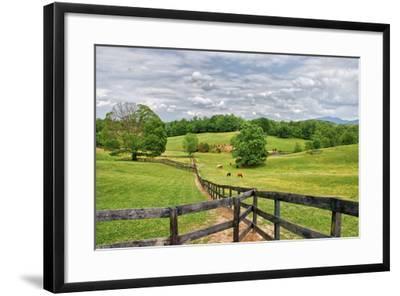 horse farm-Bob Rouse-Framed Photographic Print