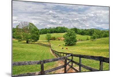 horse farm-Bob Rouse-Mounted Photographic Print
