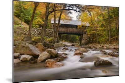 The Flume Bridge-Michael Blanchette-Mounted Photographic Print
