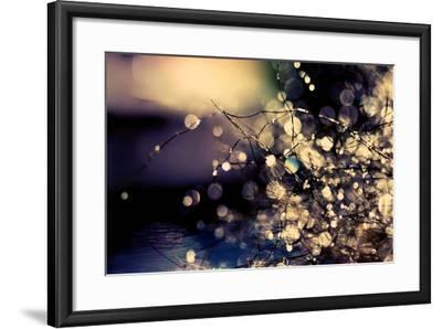When Fairies Dream-Incredi-Framed Photographic Print